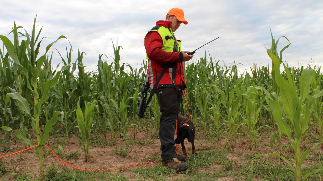 Hundefuehrer-Stehend-von-Vorn
