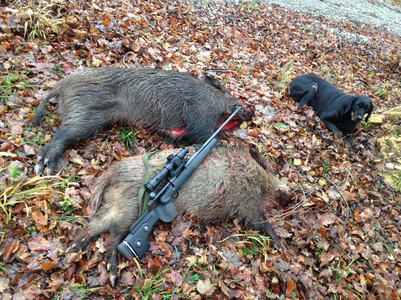 GRS-Berserk-Remington-700-Strecke-Drueckjagd