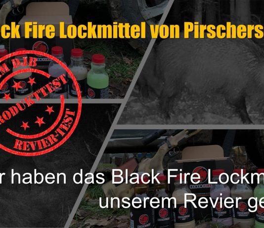 Beitragsbild Black Fire