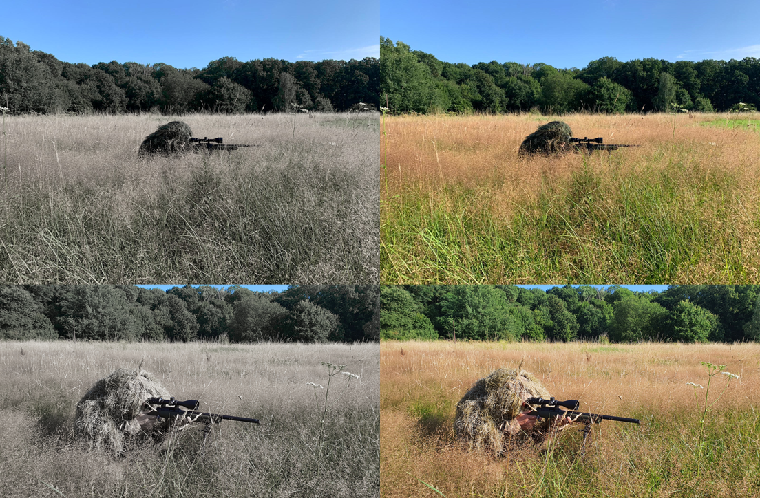 Tarnung auf der Jagd, helle Flächen, dunkle Flächen